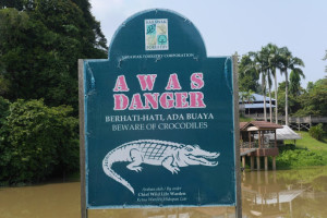 A walk in the woods – Niah National Park, Miri, Sarawak, Malaysia – the park and the caves
