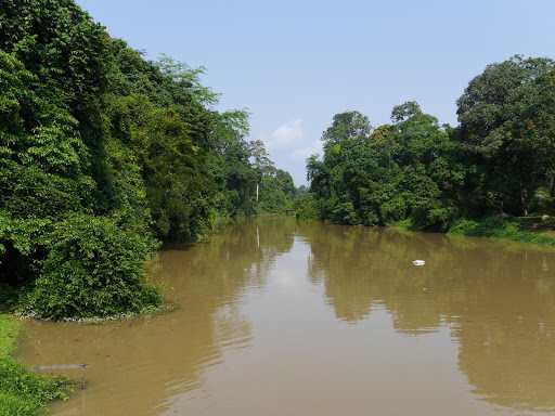 The RM 1 (each way) river crossing to get to the park