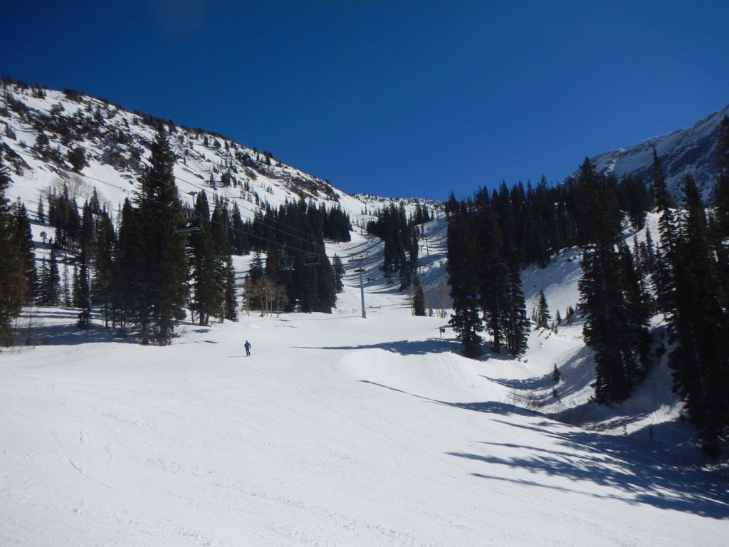 skiing snowbird - Stunning! Does it get any better than that?