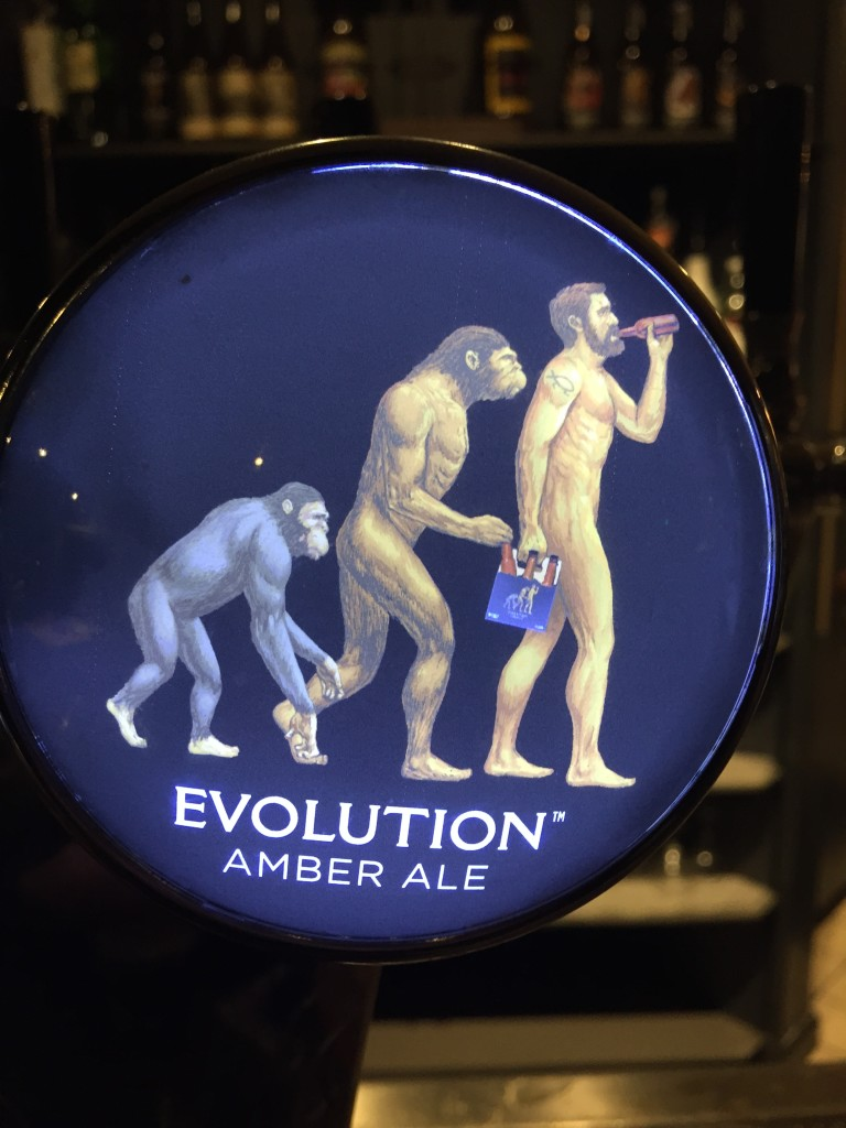 Evolution Ale - Squatters Craft Beers