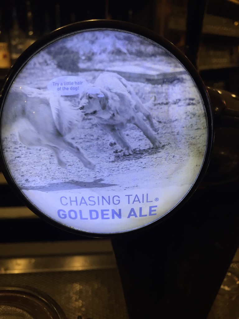Chasing Tail - Squatters Craft Beers