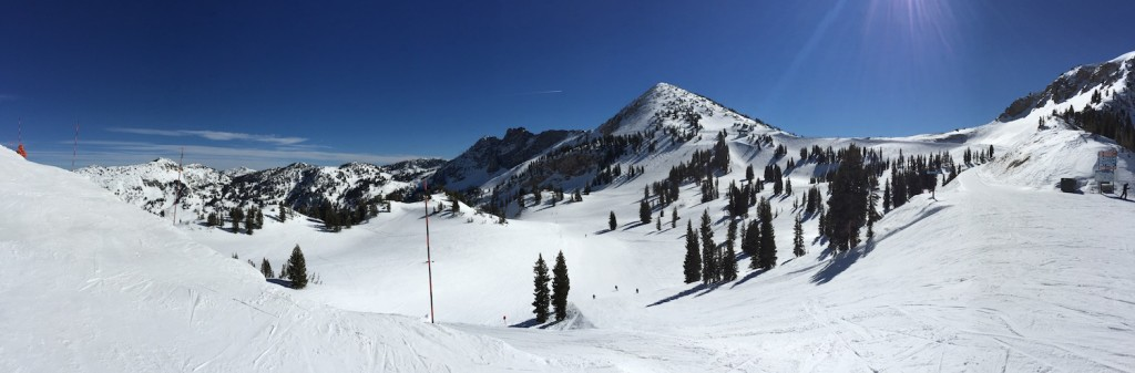 skiing snowbird - Just wow!