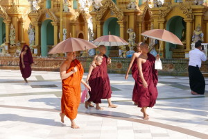 Buddhist Monks of Myanmar (Burma)