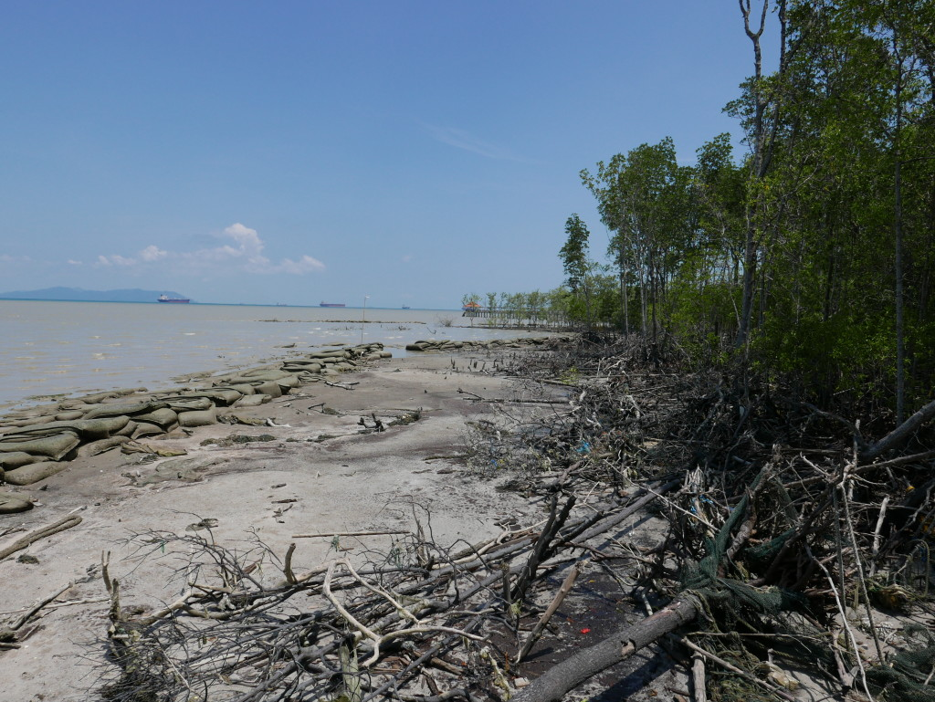 Coastal protection at Tanjung Piai National Park