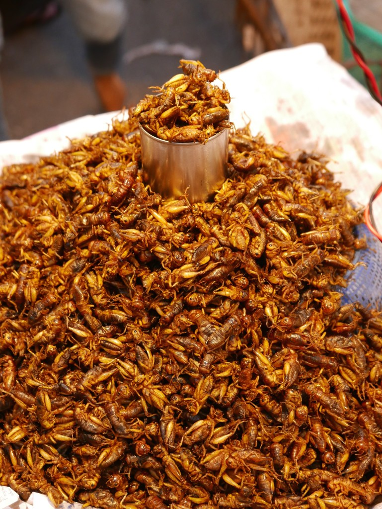 Deep fried crickets - Chinatown, Yangon (Rangoon), Myanmar (Burma)