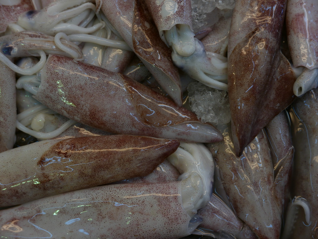 Fresh Squid at Bestmart
