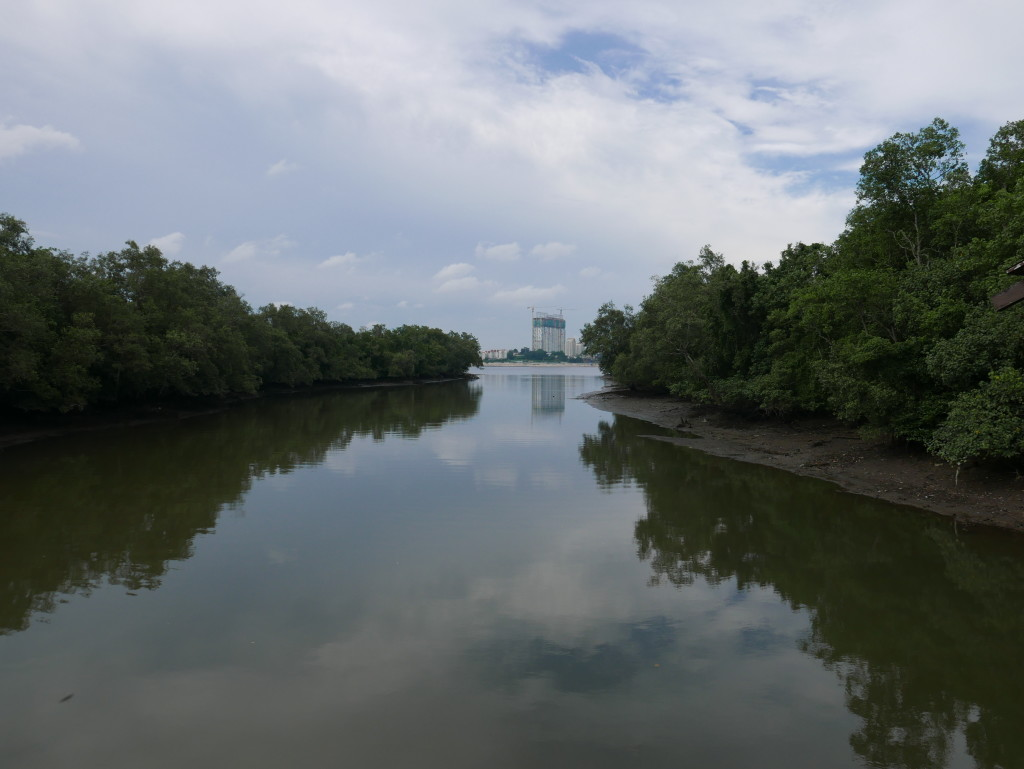 And just across the water from Sungei Buloh Wetland Reserve, Singapore - Johor Bahru, Malaysia
