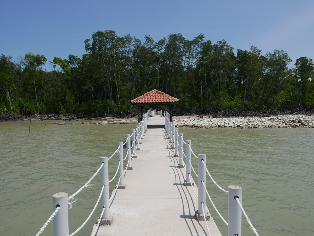 Looking back towards the swamp from Fisherman's Jetty - Tanjung Piai National Park