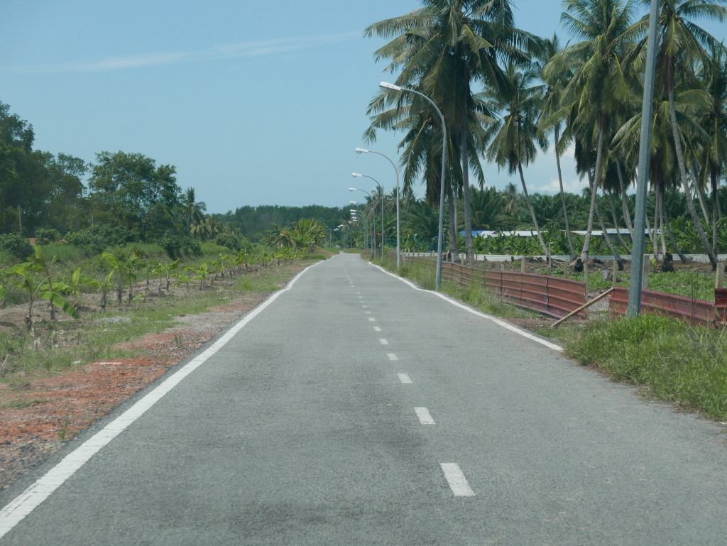 Road to Tanjung Piai National Park
