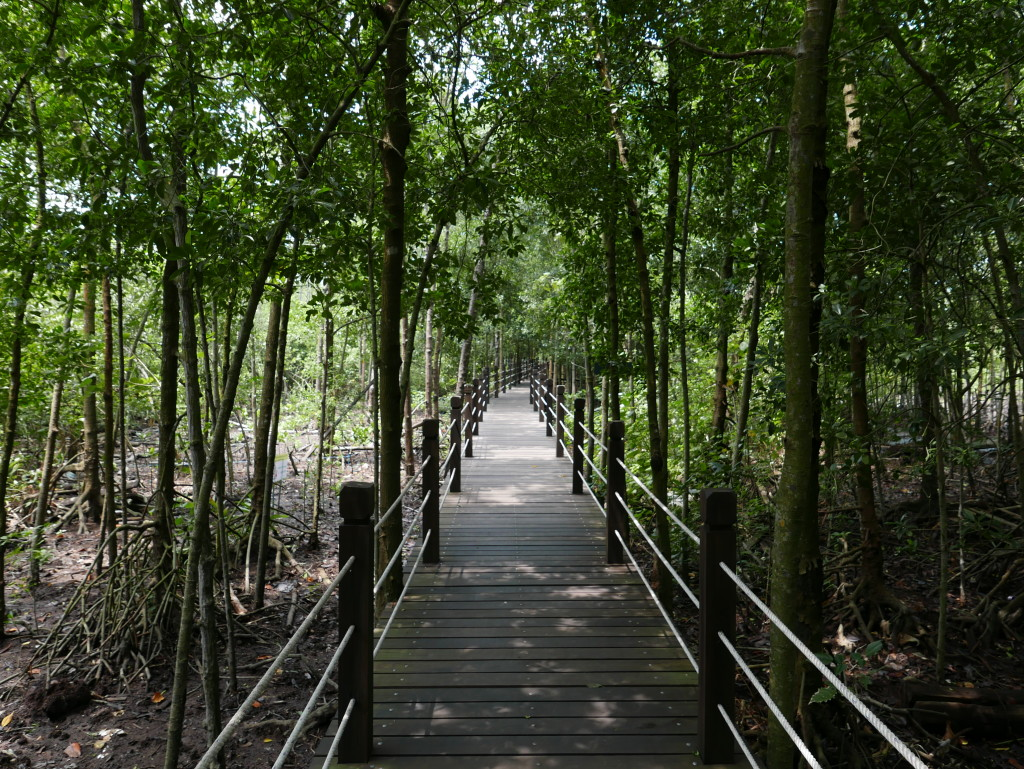 New walkway at Tanjung Piai National Park