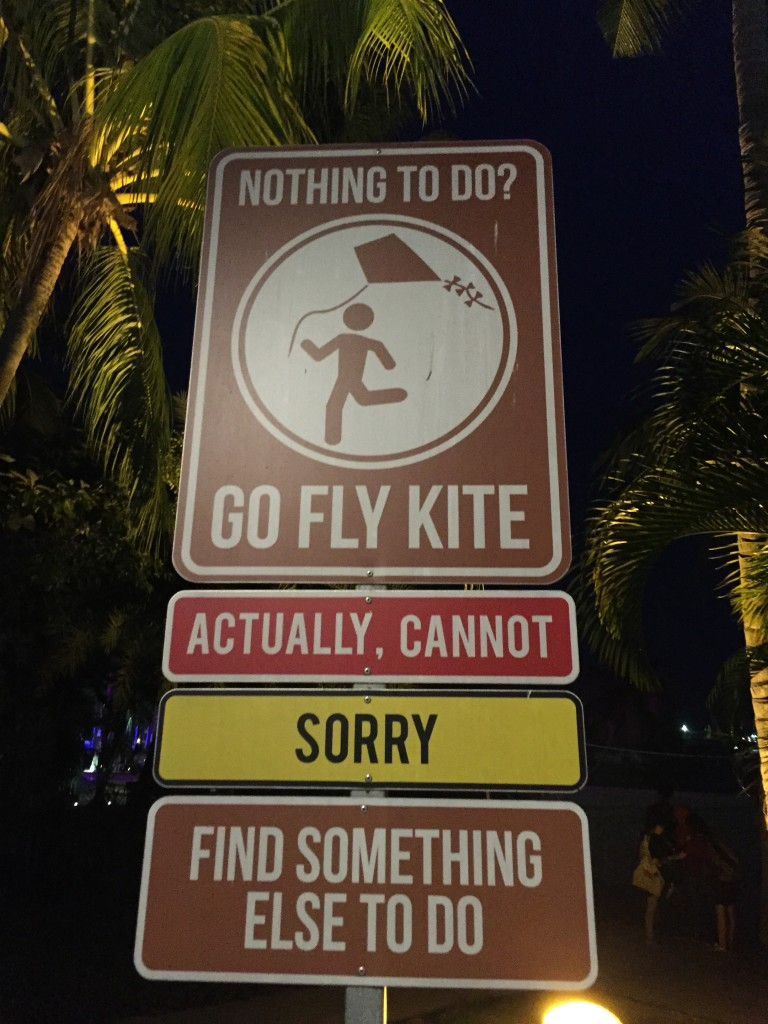 Really? You can't fly a kite on Siloso Beach, Singapore, at night?