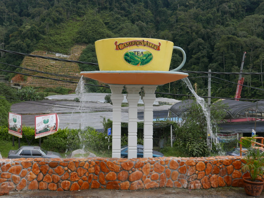 cameron-valley-tea-house